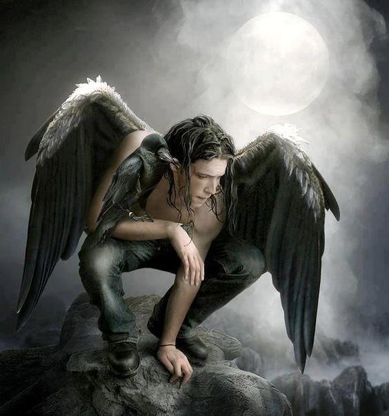 erotikkino angel of fantasy roth