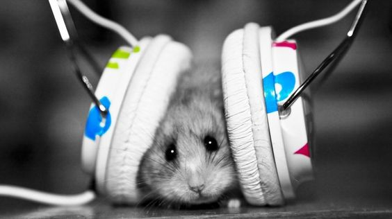 I turn the music up, I got my records on.  I shut the world outside, until the lights come on.