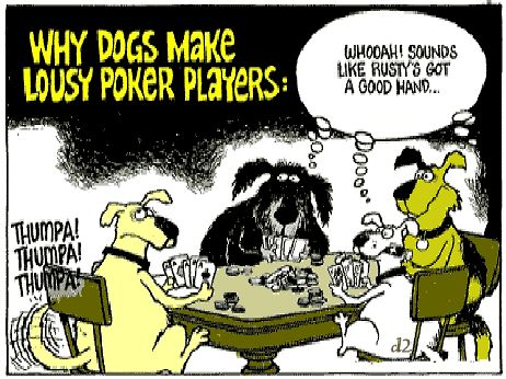 funny dog cartoons | funny-dog-cartoon-lousy-poker-players ...