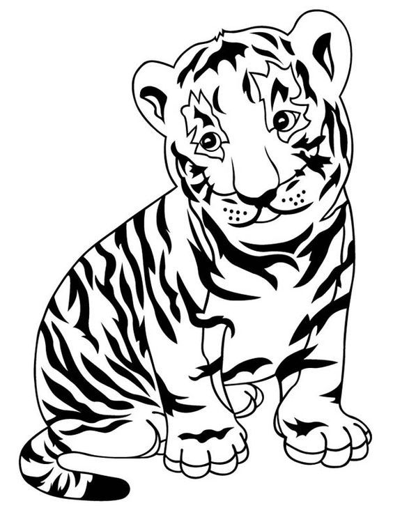 Tiger Coloring Pages To Print Coloringpagesforkids
