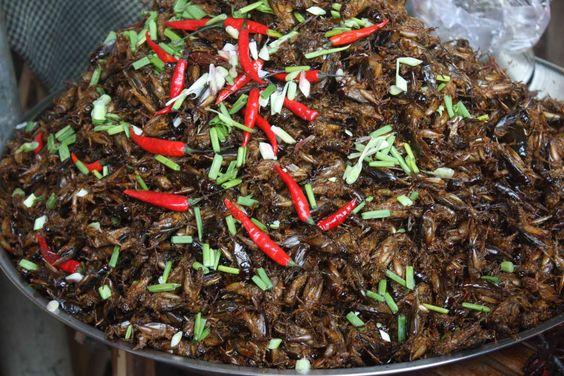 Ngoài kiến thì côn trùng khác cũng được sử dụng rất nhiều ở Campuchia