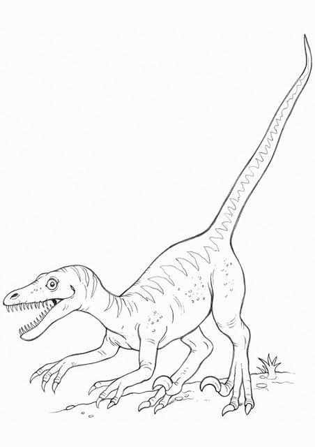 Aneka Mewarnai Gambar Dinosaurus Yuk Warnai Di 2020 Dengan