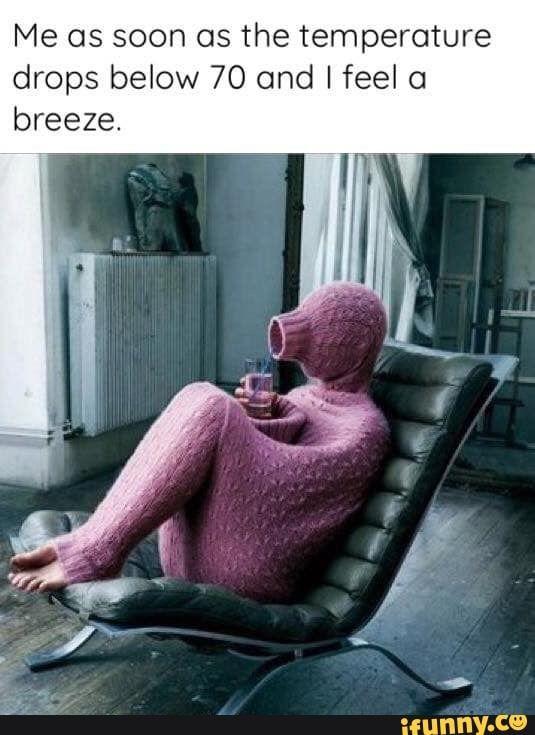 Funny Cold Memes : funny, memes, Temperature, Drops, Below, Breeze, IFunny, Weather, Funny,, Memes,, Frozen, Memes