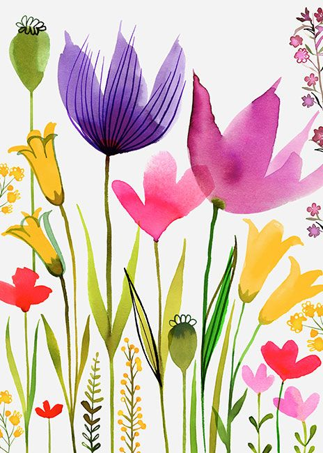 Margaret Berg Art : Illustration : florals / spring: