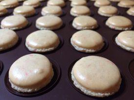 Homemade #Macarons #MyCamino