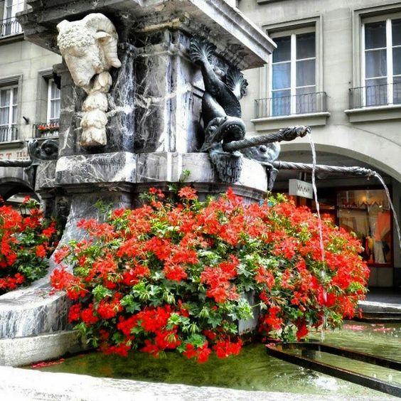 Fountain in the city center