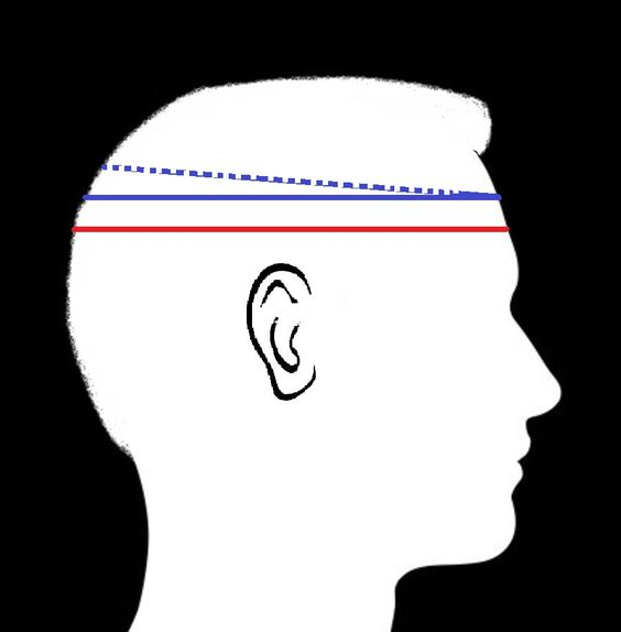 """Boaters are often worn higher on head due to shallow crown height or at can be worn a slanted angle. Likewise Berets are worn higher ( some say 2 finger above eyebrow - though depends on ones fingers size!). The diagram show this cross section of the head is smaller than the standard """"hat"""" position. So as a rule a Beret or Boater is one size SMALLER than standard HAT size as heads tend to taper in further up to smaller a cross-section."""