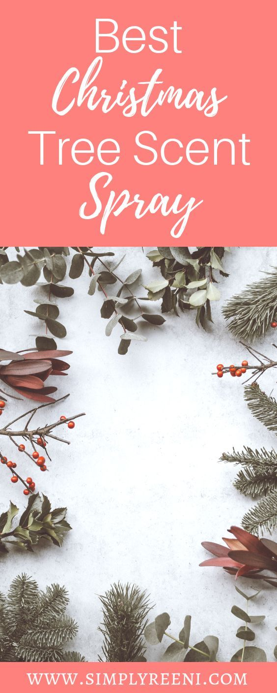 Best Christmas Tree Scent Spray Christmas Tree Scent Spray Christmas Tree Scent Cool Christmas Trees