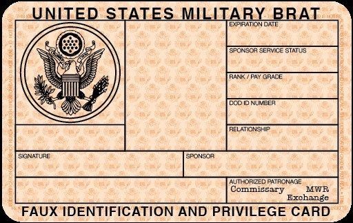 Blank State Id Template Datanta Us Id Card Template Passport