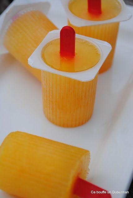 Ca bouffe un Doberman: Petites glaces à l'orange, rigolotes et ultra simples (sans sorbetière)