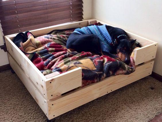 diy dog bed dog beds pinterest diy dog bed dog beds and dog - Diy Dog Bed Frame