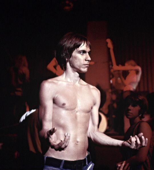 Psychedelic Jungle: Iggy Pop (and the Stooges) perform at the Whisky a Go Go on…