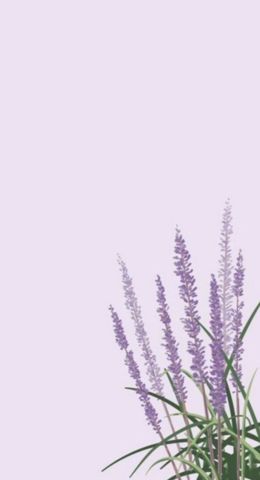 Pin By Ester Oliveira On Aesthetic Wallpapers Lavender Aesthetic Simple Wallpapers Landscape Wallpaper