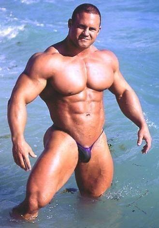 speedos google images and swimwear on pinterest