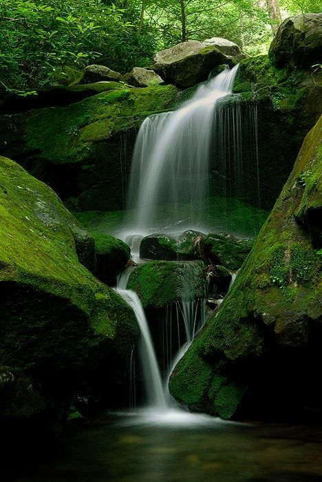 Lower Grotto Falls, Great Smoky Mountain National Park, straddling the border of…