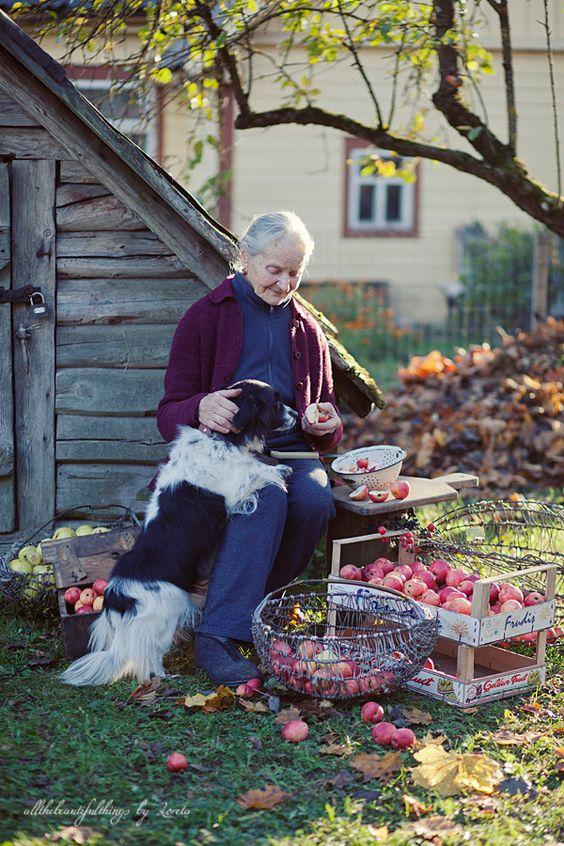 country life - farm - ferme - Bauernhof - granja