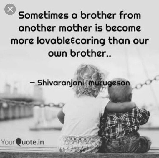 Pin By Vijay Saravanan On Reality Quotes Brother Quotes Best Brother Quotes Brother From Another Mother
