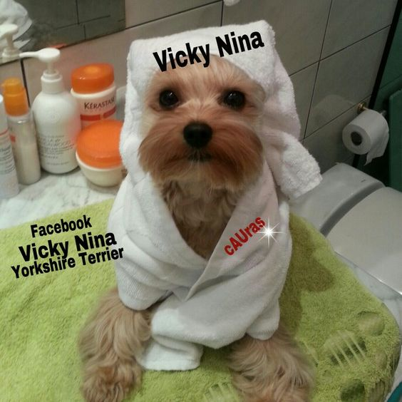 Vicky Nina no banho - spa relax - tratamento de beleza
