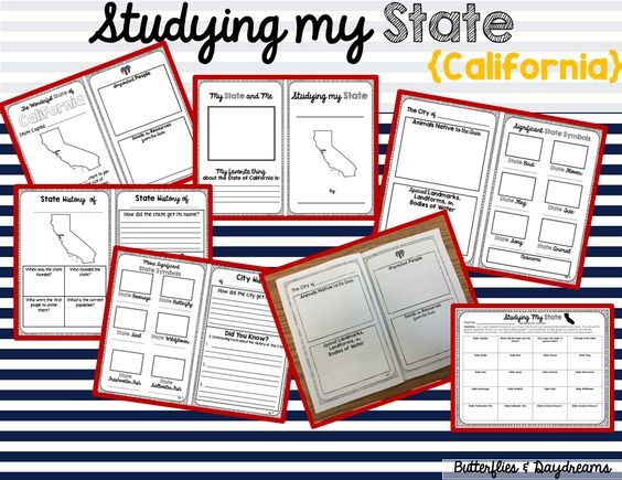 my state research project
