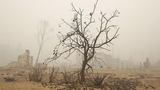 200 millones de estadounidenses sufrirán graves problemas mentales por el cambio climático