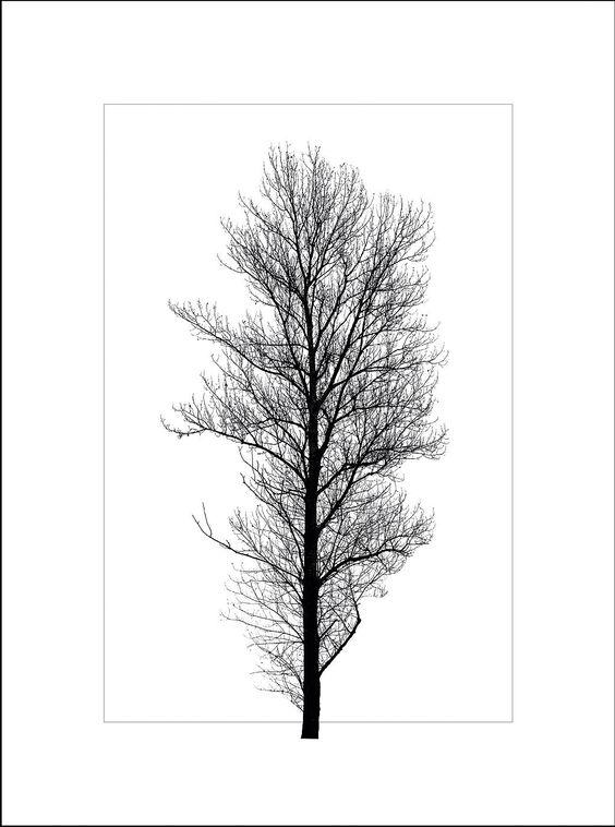 Dieses Glasbild mit Rahmen ist ein echter Blickfang. Der Bilderrahmen mit dem Print: »Winterbaum 2« ist eine tolle Wanddekoration und ist perfekt für ein schönes Wohnambiente.  Der Bilderrahmen ist mit verschiedenen Glasbildern zu kombinieren und sorgt für eine stilvolle Dekoration im skandinavischen Design.   Artikeldetails:  Hochwertig bedrucktes Floatglas, 4 mm Stärke, 1,9 mm schwarzem Bildr...