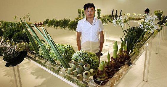 Tradition trifft Minimalismus: Der Bonsai im Eisblock - Bilder - Kunst - FOCUS Online