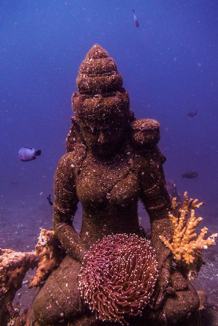 marine-science: Tulamben diving - II-1030840 by Tras Nuevos Horizontes Underwater Temple at Coral Garden - Tulamben:
