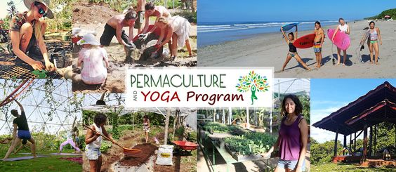 Permaculture and Yoga Retreat in Costa Rica