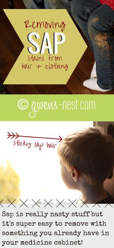 Tree Sap Stains - Gwen's Nest