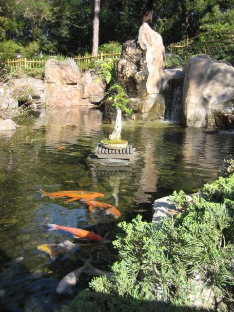 Pinterest the world s catalog of ideas for Cool koi ponds