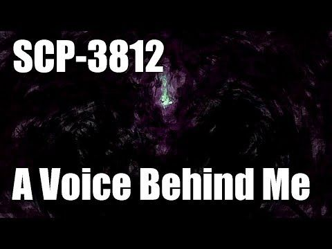 Scp 3812 A Voice Behind Me Keter Class Temporal Humanoid