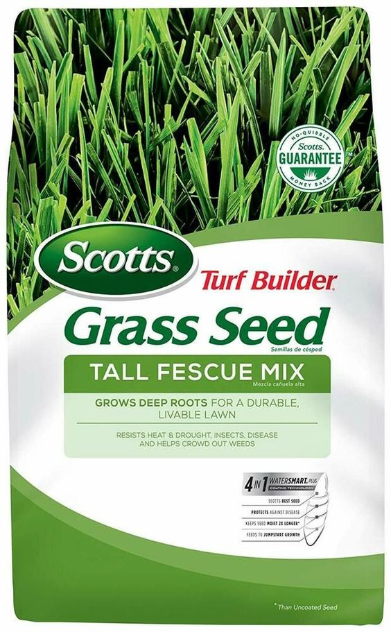 42+ When to apply scotts weed and feed info