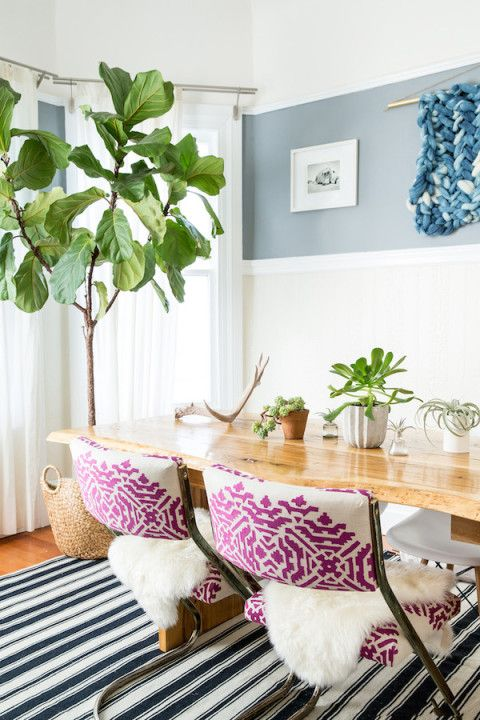 Colorful dining room:
