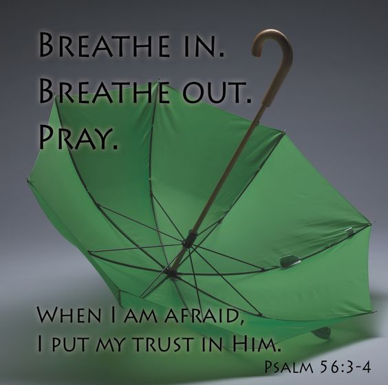 Breathe in. Breathe out. Pray. When I am afraid, I put my trust in Him.  Psalm 56:3-4