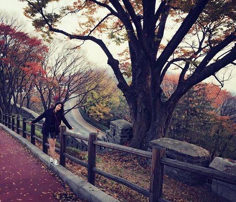 Đường lên tháp Namsan mùa thu