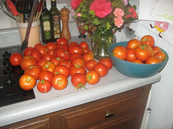 How to Process Tomatoes When You Aren't Ready to Make Sauce Yet