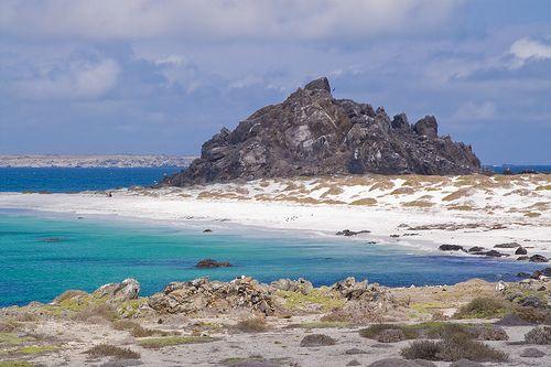 Reserva Nacional Pinguinos de Humboldt - Chile