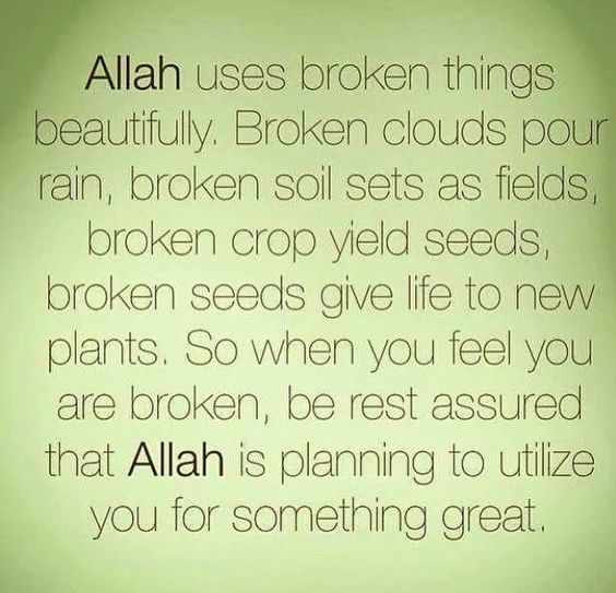 Allah Uses Broken Things...