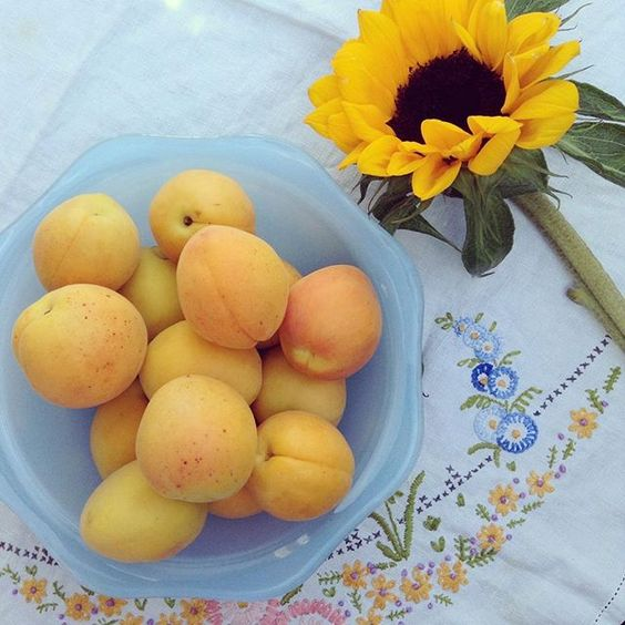...on a far more positive note we do still have a WHOLE month of August and does anything say summer more than apricots and sunflowers (and my granny's embroidered tablecloth)? #summer #sunshine #apricot #vintage #vintagestyle #embroidery #sunflowers #yel