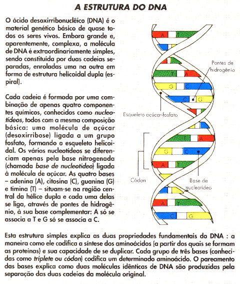 Uva Genetica Geneticauva2015 On Pinterest