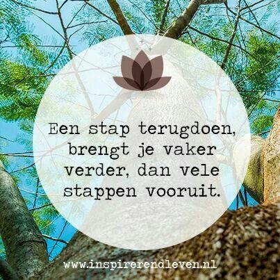 .Een stap terugdoen brengt je vaak verder dan vele stappen vooruit. #dutch #quote