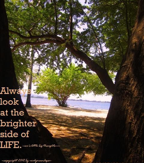 Always look at the brighter side of life. (-eve's little big thought-)