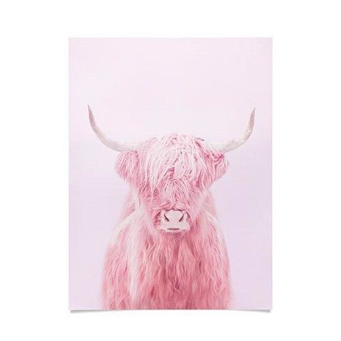 18 X24 Paul Fuentes Highland Cow Unframed Wall Poster Print Pink Deny Designs Target Cow Art Cow Art Print Highland Cow Art