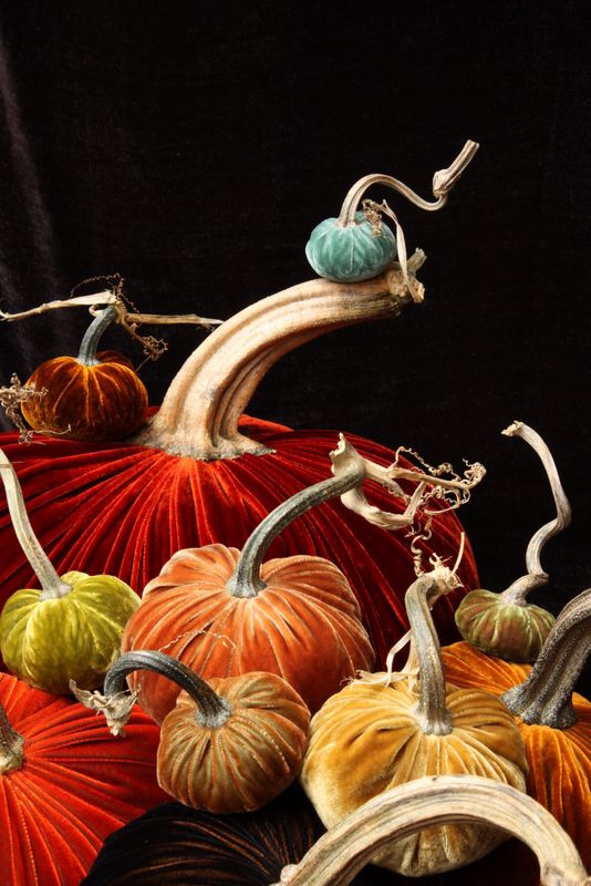 Velvet Pumpkins by Daria Knowles  http://velvetpumpkins.typepad.com ~ I'm totally in LOVE with the itty bitty aqua punkin on the tippy top!!!  <3