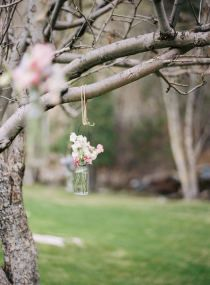Love the idea of hanging vases from bare birch trees