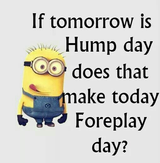 Hump Day Funny Minion Quotes