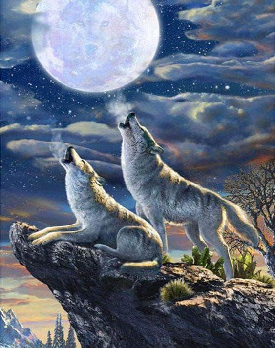 Wolf In The Moonlight Square Diamond Painting  #5ddiamondpainting #diamondpaintingdiy #prettyneatcreative #paintwithdiamonds #crossstitch #paintingbynumbers #diamondpaintingaddict #diamondpainting #diamondpaintinglovers
