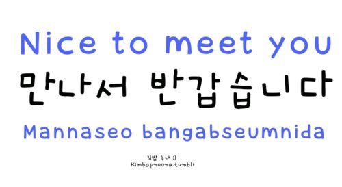 nice to meet you gna hangul