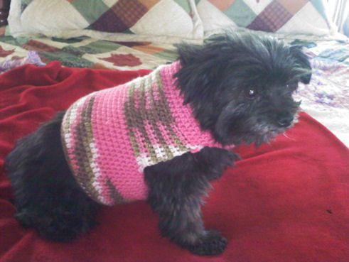 Easy Dog Sweater Crochet Pattern Crochet Pinterest