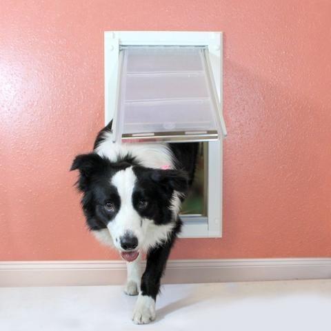 Endura Flap Pet Door For Walls Wall Mount Dog Door Best Dog Door Pet Door Buy Pets